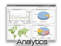 Google Analytics®